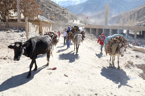 بالصور تعبير عن قريتي , موضوع عن حب القرية 13876 4
