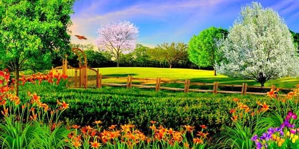 بالصور تعبير عن قريتي , موضوع عن حب القرية 13876 7