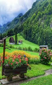 بالصور تعبير عن قريتي , موضوع عن حب القرية 13876 9