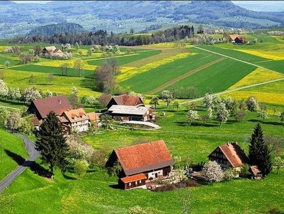 بالصور تعبير عن قريتي , موضوع عن حب القرية 13876