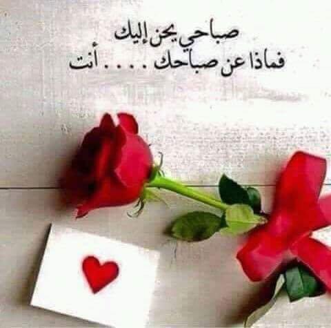 بالصور صباح الخير للحبيب , اجمل رسالة لبداية رومانسية لليوم 2480 13