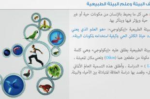 صورة تعبير عن البيئة , صور تشرح المصطلحات البيئية بشكل متنوع