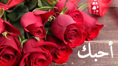 صور ورود رومانسية , اروع الزهور لعشاق الرومانسية
