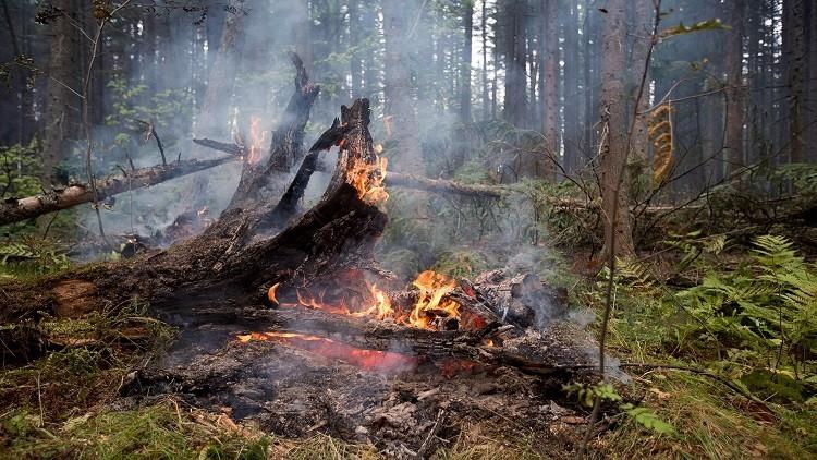 صورة مشاكل البيئة , مخاطر تهدد التوازن البيئي لكوكب الارض