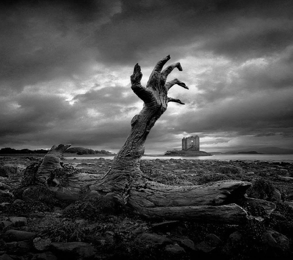 صورة تفسير الموت في المنام , تعرف على معنى الوفاة في الحلم