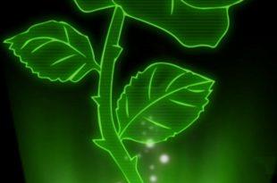 صورة الصور ثلاثية الابعاد , معني الصور ثلاثية الابعاء