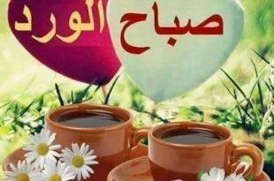 صور صور عليها صباح الورد , اجمل صباح الورد