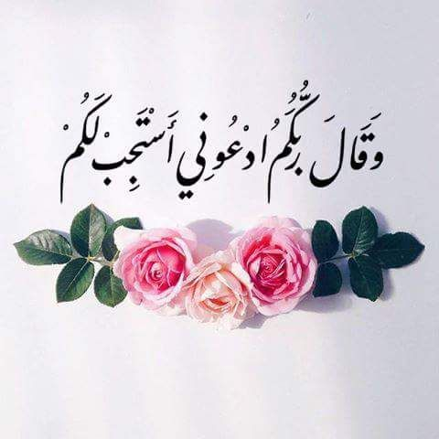 صورة صور اسلامية فيس , الاسلام هو الحل