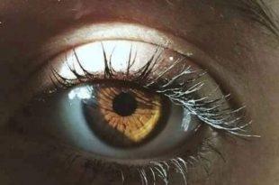 صورة صور عيون عسليات , اجمل العيون العسليه