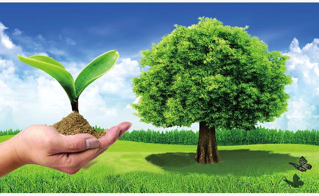 صورة صور عن البيئة , اجمل صور للبيئة المحيطة