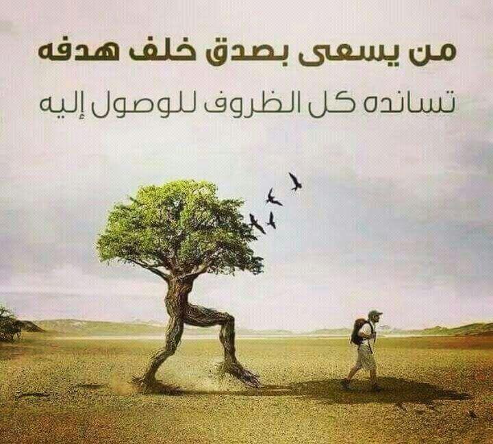 صورة صور حكمة , اروع واجمل صور حكم ممكن تشوفها 400