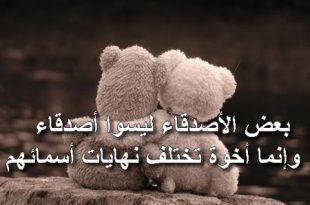 صورة صور معبرة عن الصداقة , صور تصف الصداقة ومظاهرها